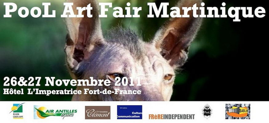 Affiche Expo PAF11