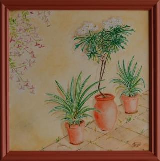 12 - 2010q04-cadre - Plantes
