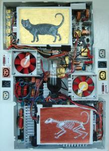 OmorO - Le chat de Schrödinger - 2011